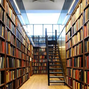 Библиотеки Сергача